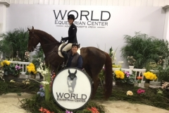 World Equestrian Center 2018